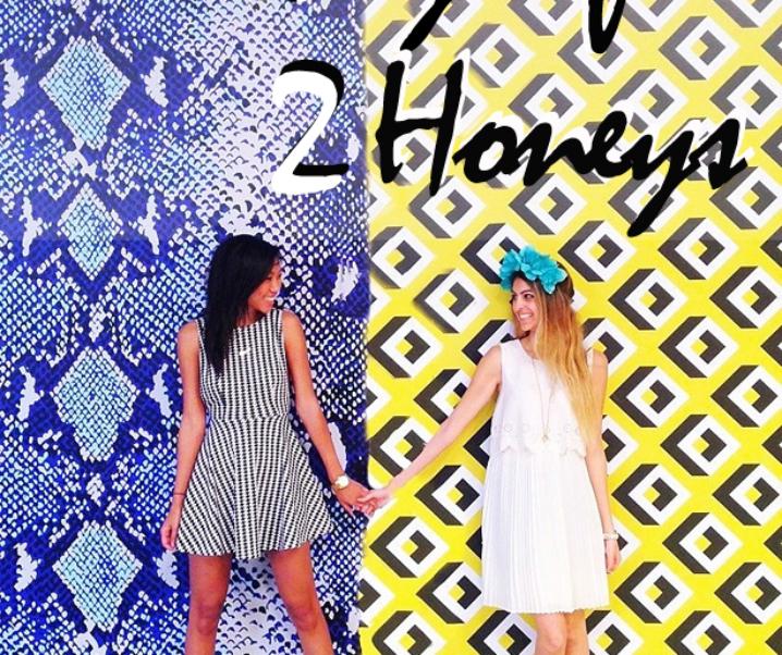 Journey Of 2 Honeys