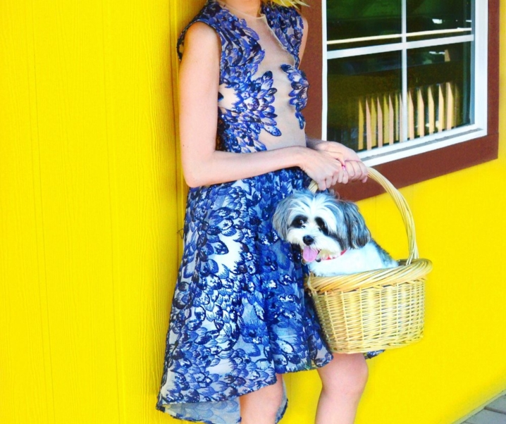 Lainey's Oz: Dorothy
