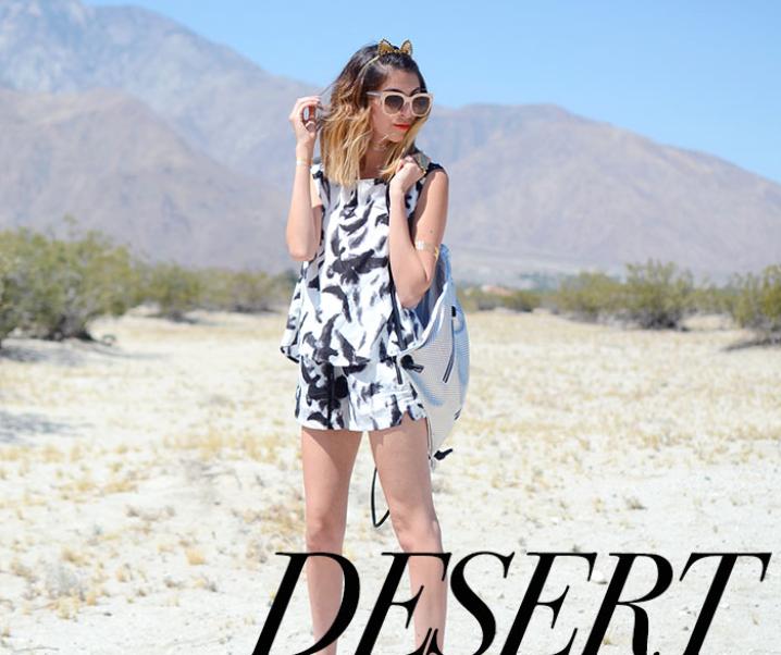 Kitty In The Desert