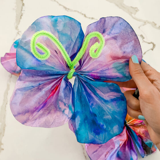 EASY Coffee Filter Butterfly Craft